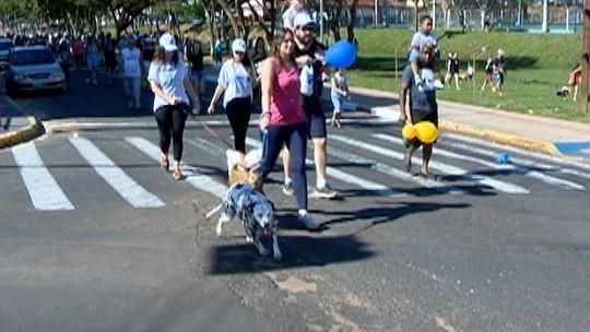 Mania de Cão agita o Parque do Povo em Presidente Prudente
