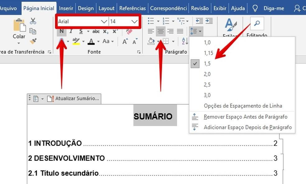 Formatting summary title Photo: Reproduction / Helito Beggiora