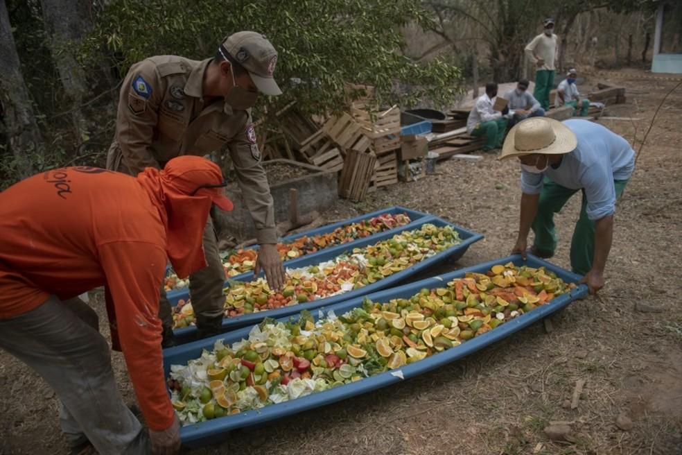 Presos preparam frutas para animais no Pantanal — Foto: Mauro Pimentel/ AFP