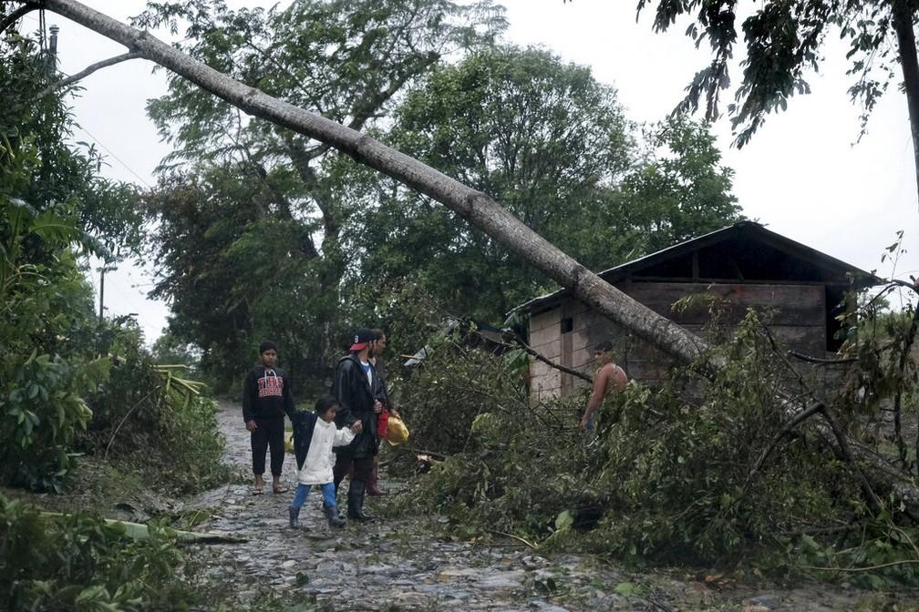 Tempestade Iota derrubou árvores e causou danos à pequena cidade de Siuna, na Nicarágua, na terça-feira (17) — Foto: Carlos Herrera/AP Photo