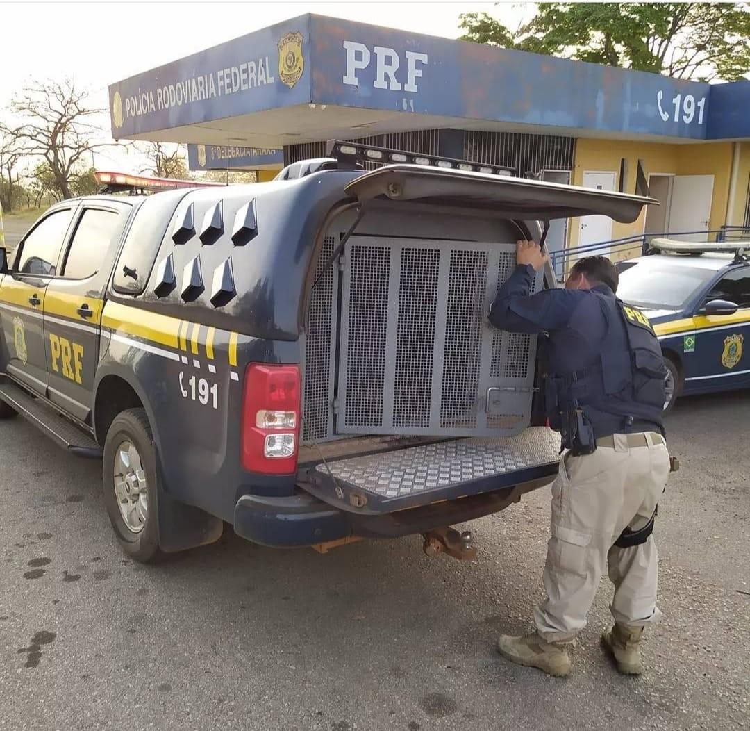 Motorista registra furto de carga de carne e é detido em Araxá
