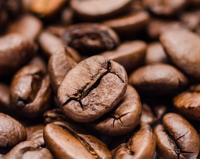 Café: concurso da BSCA classifica 40 amostras finalistas