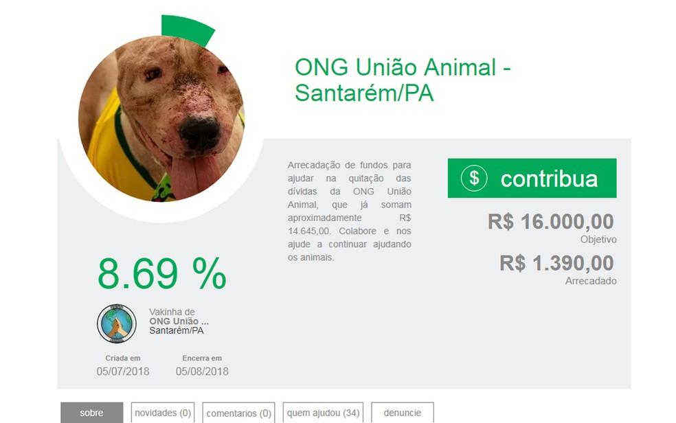 -  Vaquinha virtual da ONG União Animal encerrará no dia 5 de agosto  Foto: Reprodução
