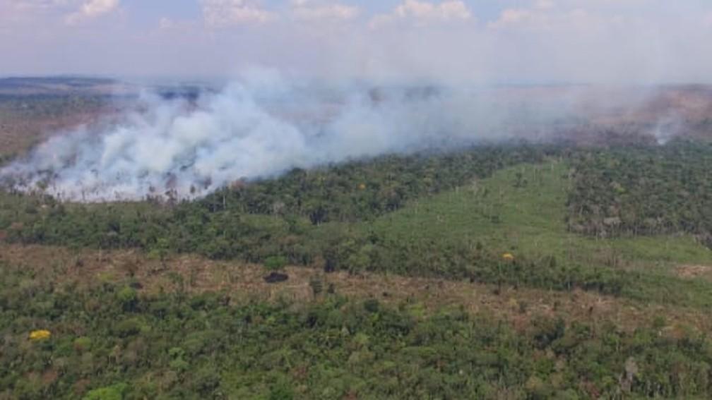 Chamas voltaram a atingir reserva ambiental no último fim de semana.  — Foto: Gedeon Miranda/Rede Amazônica