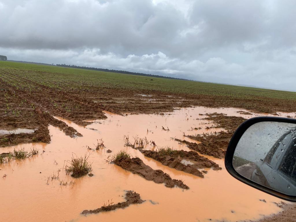 Chuvas alagam lavouras, atolam máquinas e prejudicam colheita da soja e plantio do milho em Sorriso (MT)