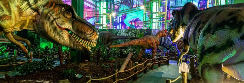 Trilha dos Dinossauros— Foto: Foto: Divulgação
