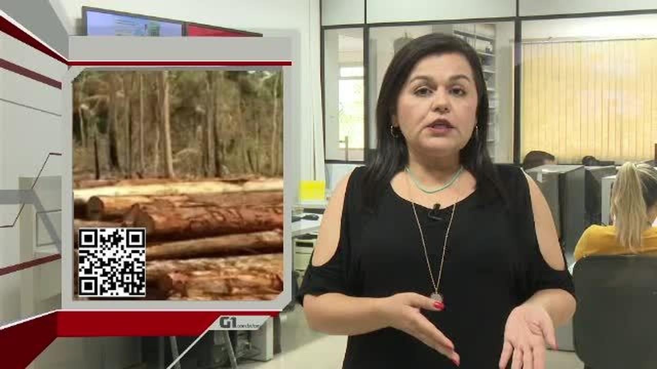 G1 em 1 Minuto - AC: Duas cidades entram para lista das que mais desmataram a Amazônia