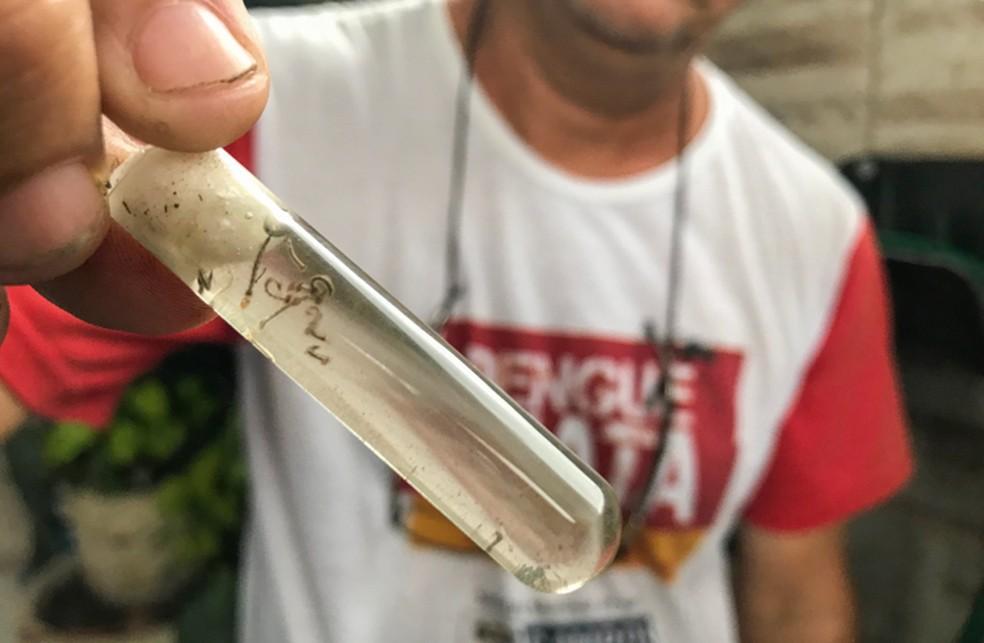 Casos de chikungunya na cidade ultrapassaram 2,6 mil no primeiro quadrimestre de 2019 — Foto: Divulgação/Prefeitura de Campos