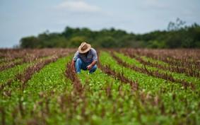Por dentro do Cubo Agro, novo hub de inovação para o agronegócio