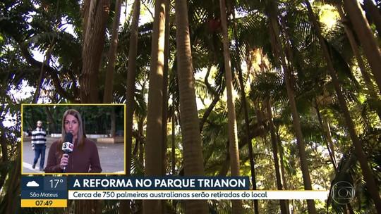 Começa a reforma do Parque Trianon, na Av. Paulista