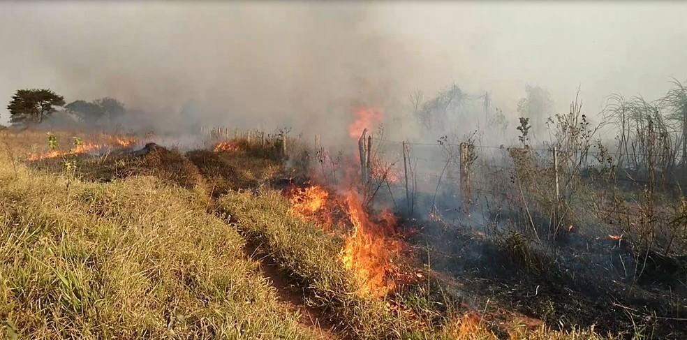 Fortes ventos ajudaram na propagação das chamas (Foto: Alan Schneider / TV TEM)