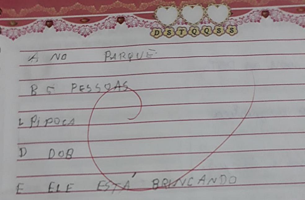 Cadernos de Suelen, de 17 anos, têm apenas atividades simples sem o professor de apoio. (Foto: Arquivo Pessoal)