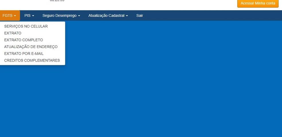 Página de consultado de saldo do FGTS — Foto: Reprodução