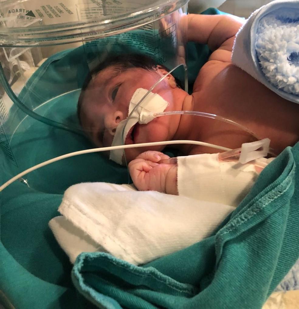 Índia recém-nascida resgatada após ser enterrada viva está na Santa Casa de Cuiabá (Foto: Abelha Táxi Aéreo)