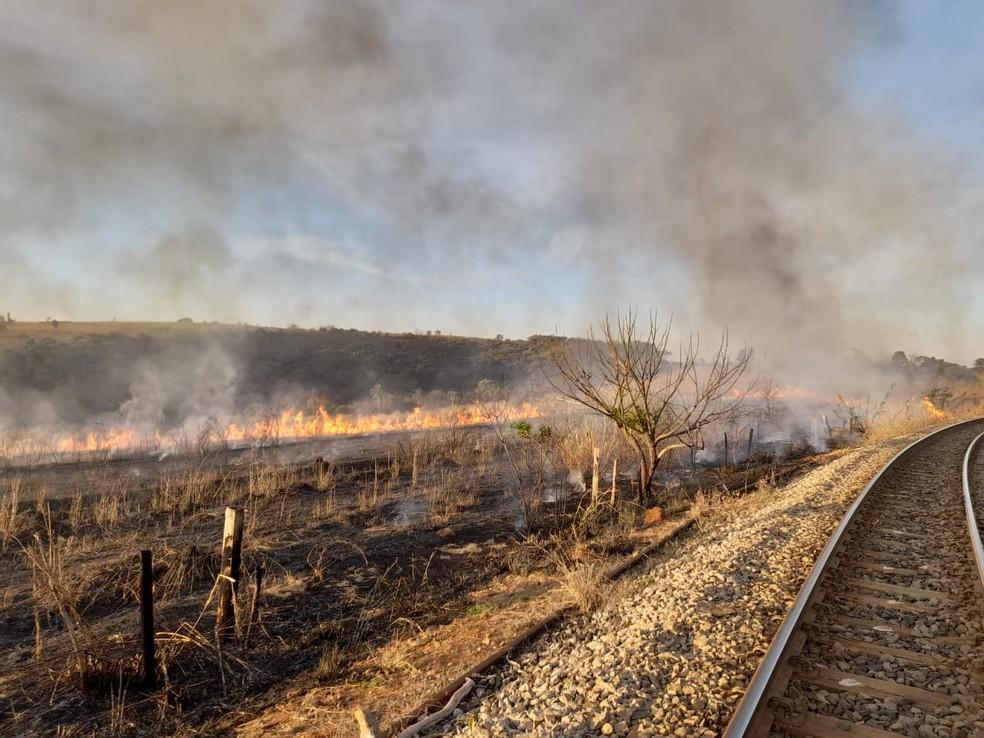 Vegetação seca colaborou para que o fogo se alastrasse com mais facilidade, segundo o Corpo de Bombeiros — Foto: Corpo de Bombeiros/Divulgação