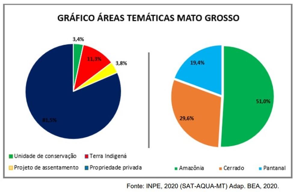 Áreas queimadas em Mato Grosso — Foto: INPE