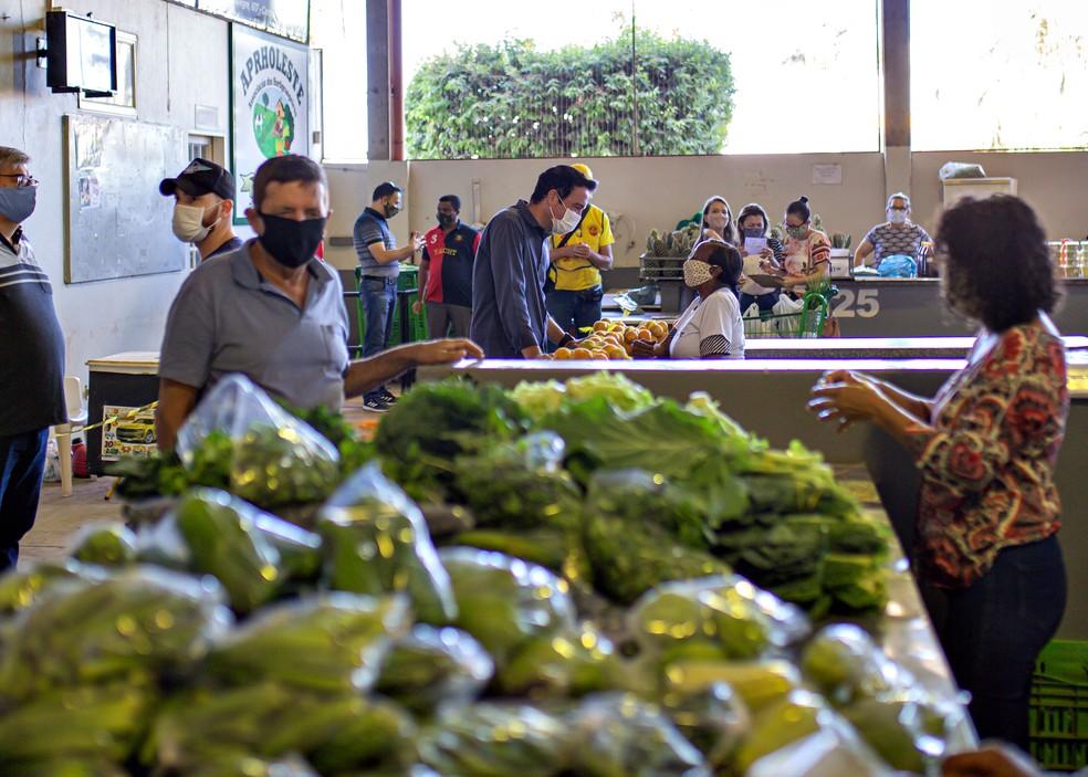 Produção da agricultura familiar abastece as principais feiras e mercados de Primavera do Leste — Foto: Divulgação