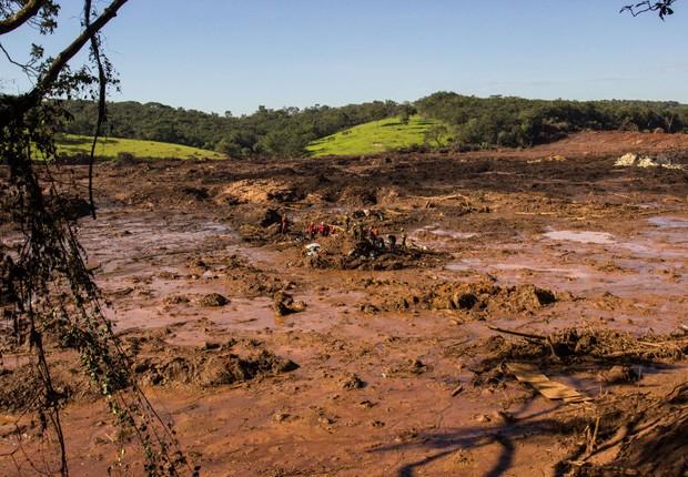 Área devastada pelo rompimento da barragem da Vale em Brumadinho (Foto: Rodney Costa/picture alliance via Getty Images)