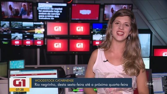 Agenda especial de carnaval: samba, música eletrônica e folia infantil agitam o fim de semana em SC