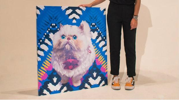 Quem tem cachorros e gatos pode reproduzir os bichinhos em telas  (Foto: Divulgação)