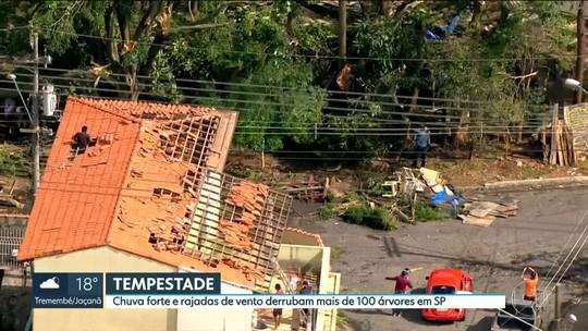 Chuva forte e rajadas de vento derrubam árvores e destelham casas em SP