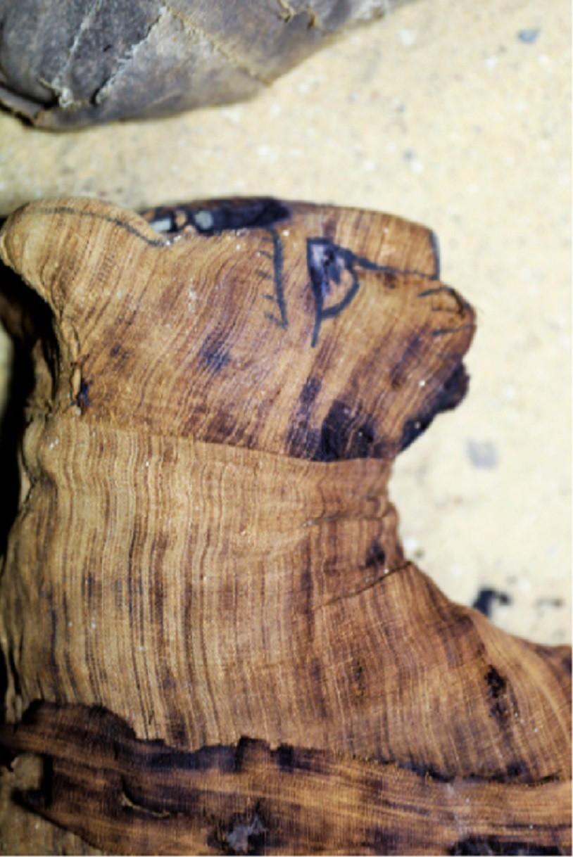 Detalhe de gato mumificado encontrado no Egito (Foto: Divulgação/ Ministério das Antiguidades)