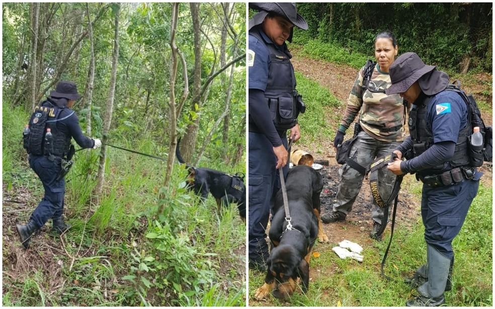 Equipe com cães farejadores fizeram buscas  — Foto: Arquivo Pessoal
