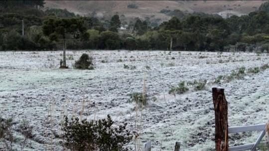 Trinta cidades de Santa Catarina amanheceram com temperaturas abaixo de zero