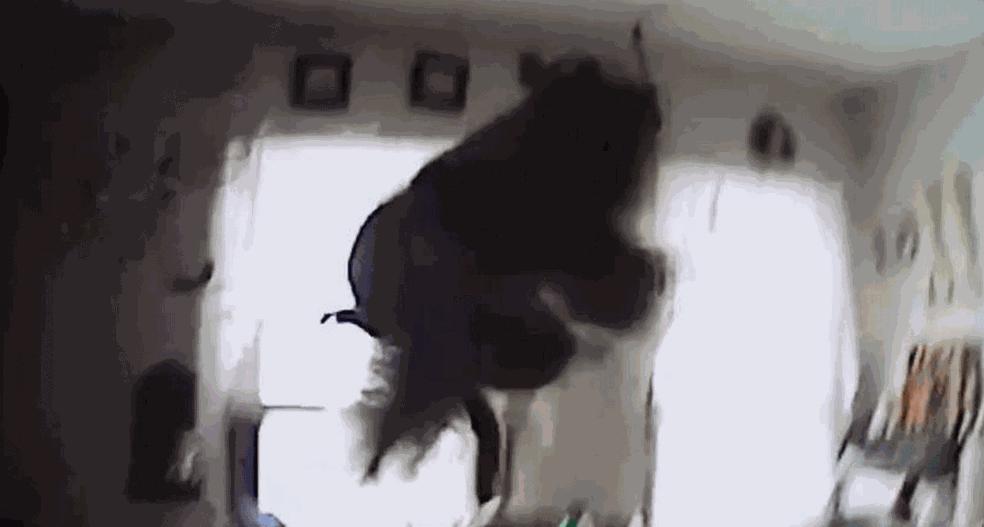 Esquilo invade casa, come biscoitos e ataca policial nos EUA (Foto: Brockport Police/Facebook)