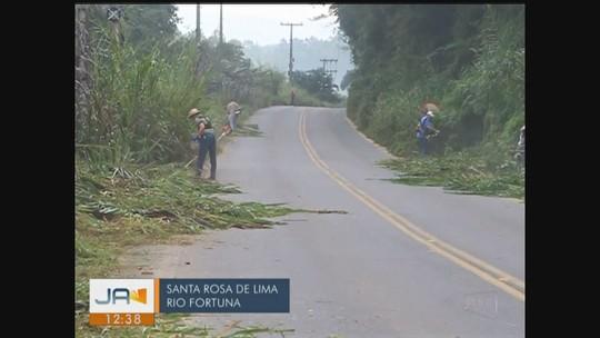 Giro de notícias: Voluntários fazem mutirão de limpeza em trecho da SC-108 no Sul de SC