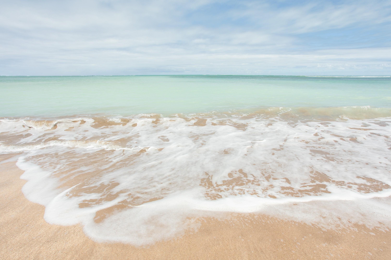São Miguel dos Milagres: paraíso em rota ecológica de Alagoas; veja FOTOS: thumbnail