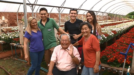 Mercado de flores ornamentais cresce no Paraná e mantém famílias unidas