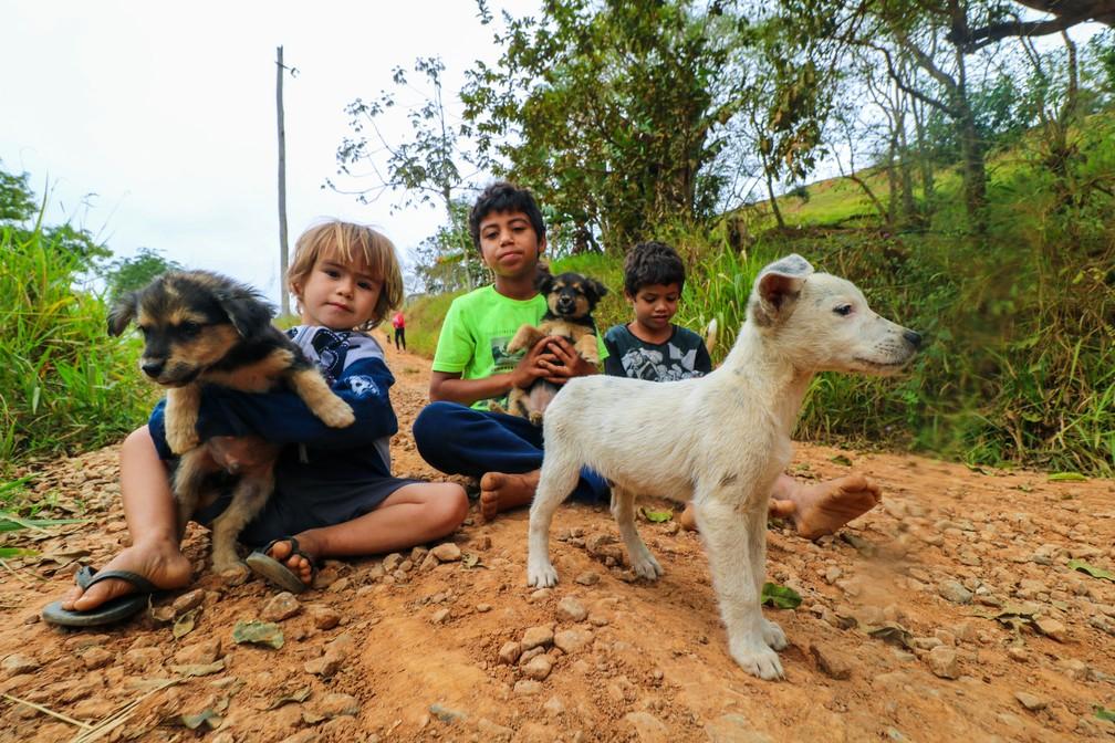 Crianças que estudam na escola Madre Teresa, em São José dos Campos — Foto: Danilo Sardinha/G1