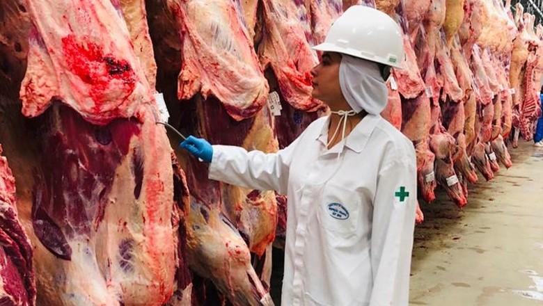 Auditores fiscais federais frigoríficos fiscalização (Foto: Anffa Sindical/Divulgação)