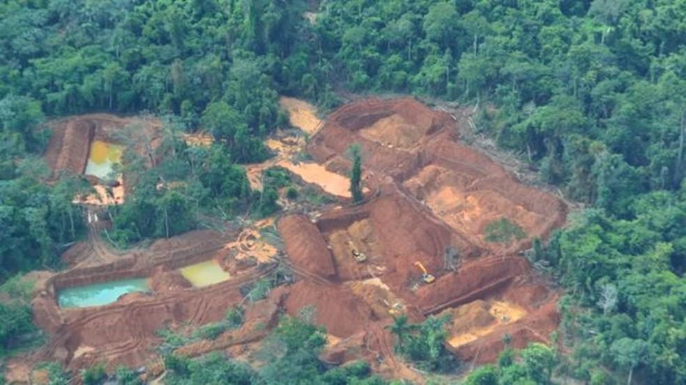 Especialistas temem que garimpeiros e outros invasores levem novo coronavírus a povos indígenas — Foto: Ibama