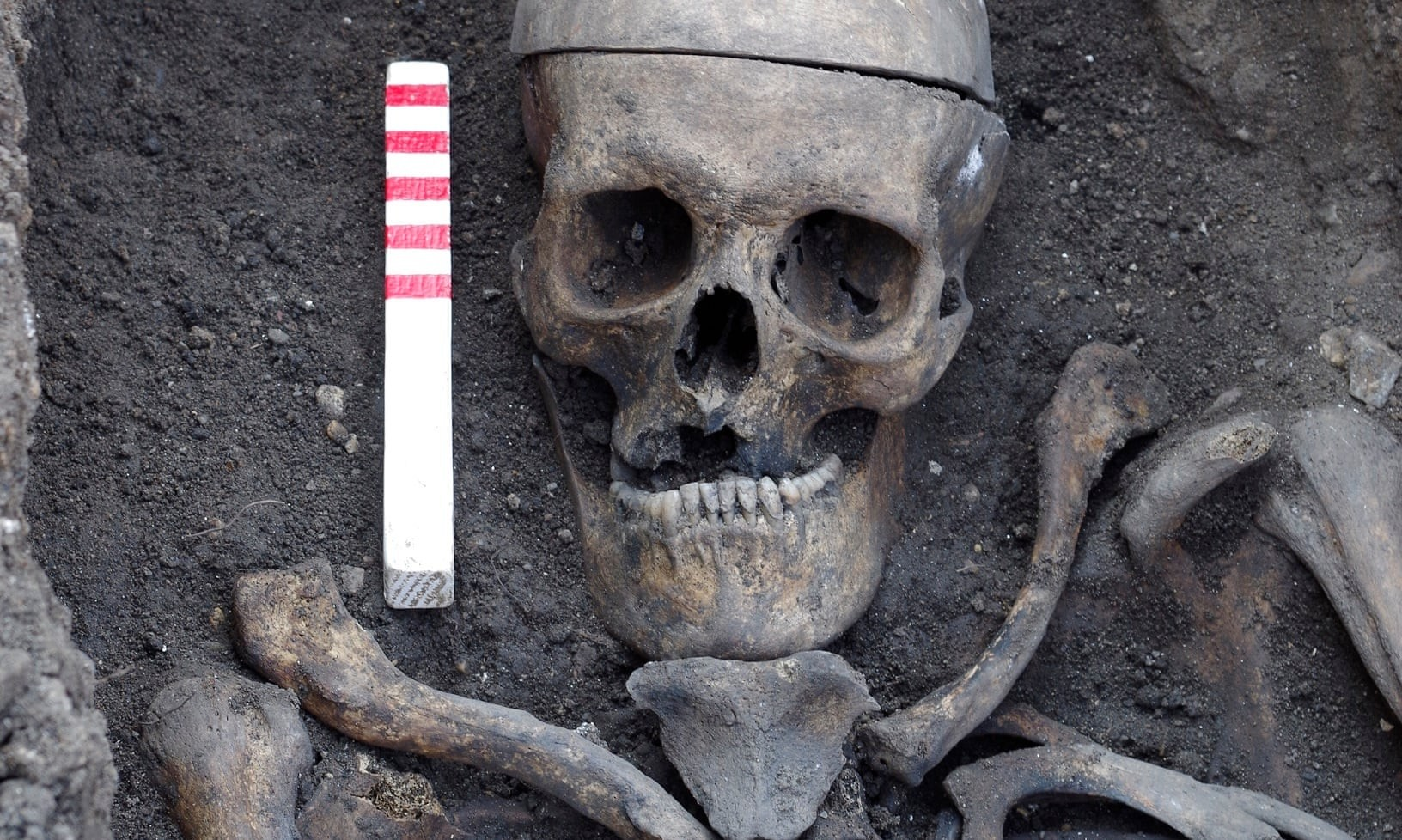 Esqueleto localizado em antigo cemitério de Londres (Foto: Divulgação/ Wessex Archaeology)