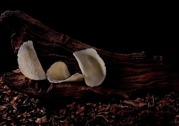 Tapioca do menu da chef Bel Coelho, inspirado nos biomas brasileiros (Foto: Sergio Coimbra)