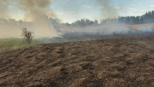 Casos de queimadas têm aumento de 154% nos últimos três meses no Sul de MG