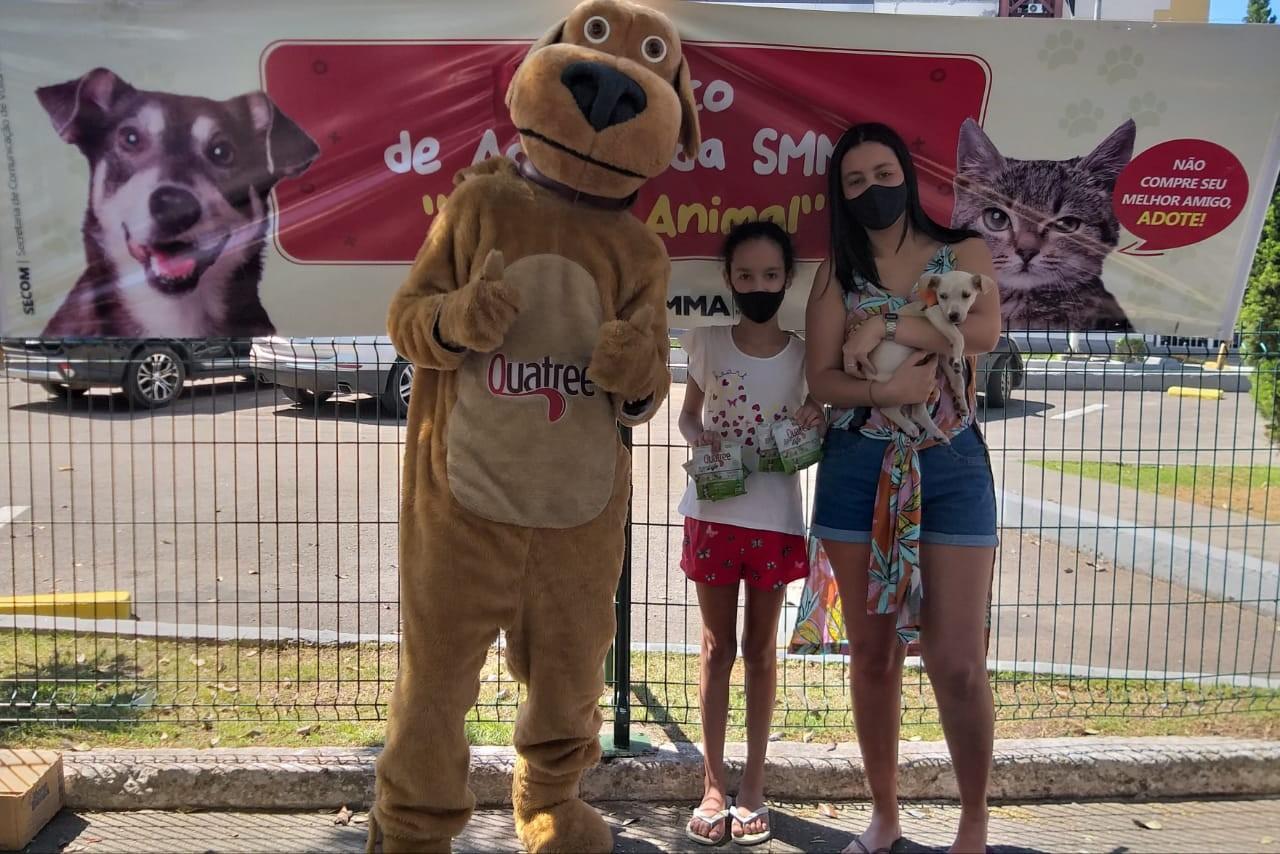 Volta Redonda promove evento para adoção de cães e gatos neste domingo