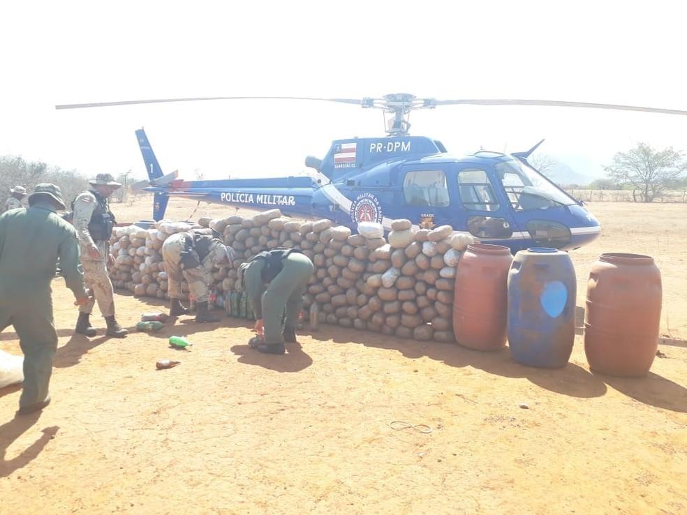 Mais de meia tonelada de maconha foram apreendidos — Foto: Divulgação/SSP