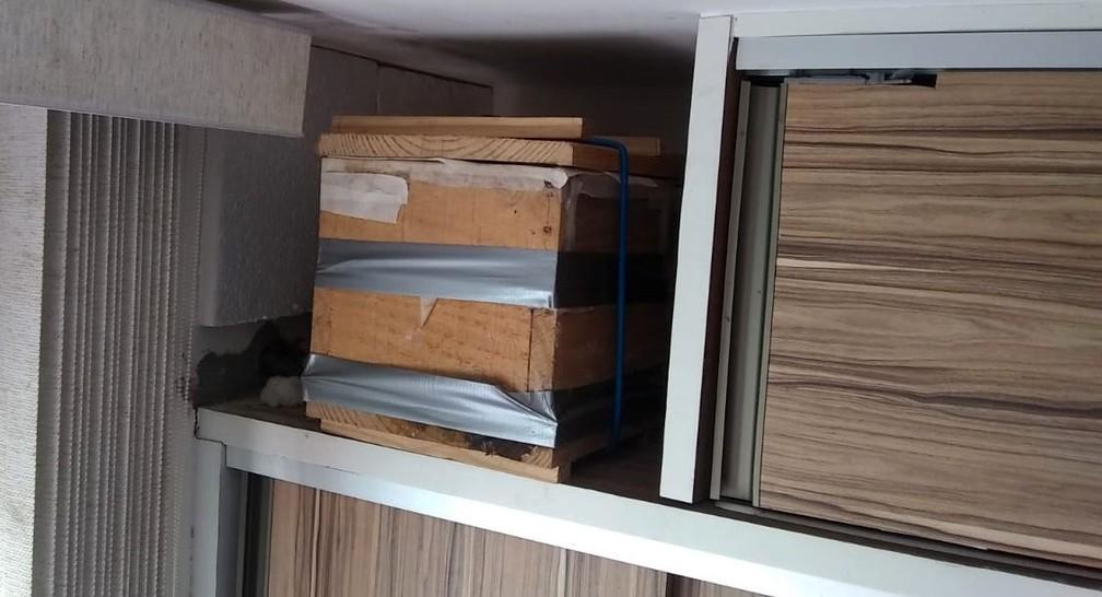 O corretor de imóveis Egídio cria as abelhas em um armário dentro do apartamento em que mora, em Salvador — Foto: Egídio Barbosa/ Arquivo Pessoal