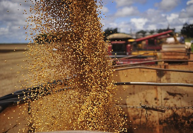 Colheita de soja ; agronegócio ; safra ; plantio de grãos ; trabalho no campo ;  (Foto: Ernesto de Souza/Editora Globo)