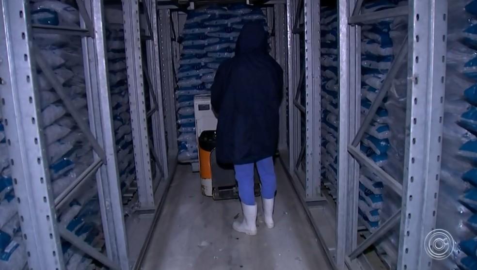 Fábrica de gelo em Sorocaba fatura mais nos meses de dezembro e janeiro  — Foto: Reprodução/TV TEM