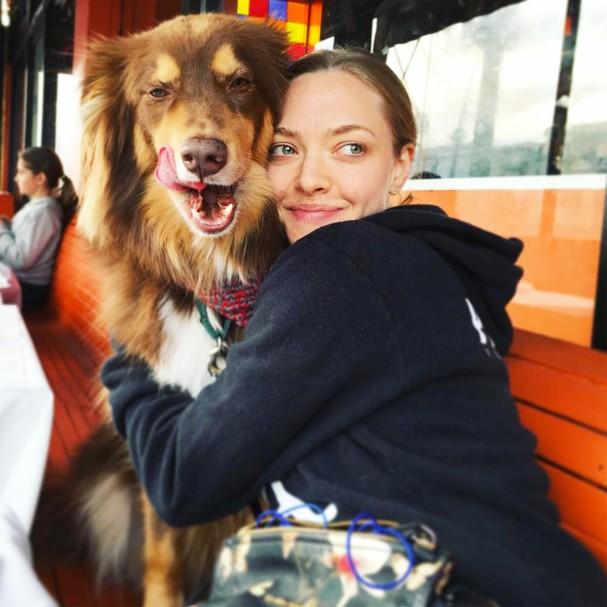 Amanda Seyfried e o cachorro Finn (Foto: Instagram/Reprodução)