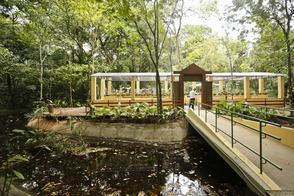 Jardim Botânico do Recife (Foto: Andrea Rego Barros/Divulgação)
