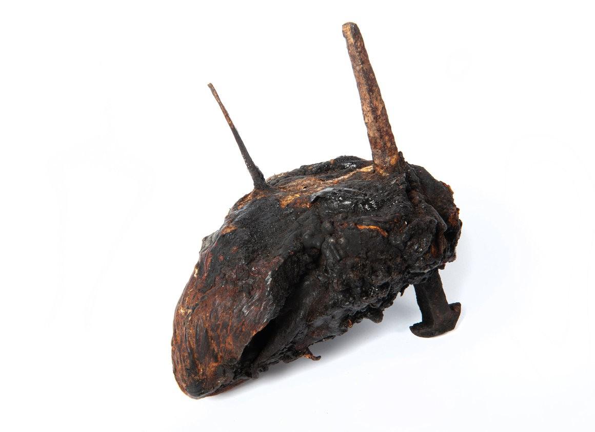Coração de touro (Foto: Pitt Rivers Museum/ Universidade de Oxford)