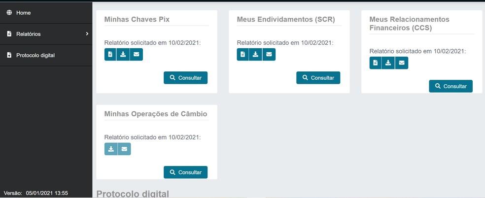 Página logada do sistema do Banco Central — Foto: Reprodução/BC