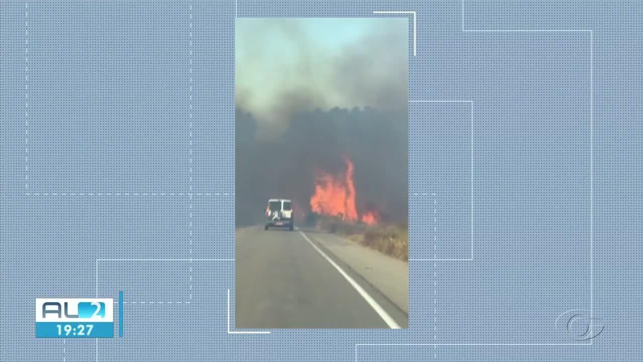 Fogo atinge vegetação na AL-101 Sul, em Marechal
