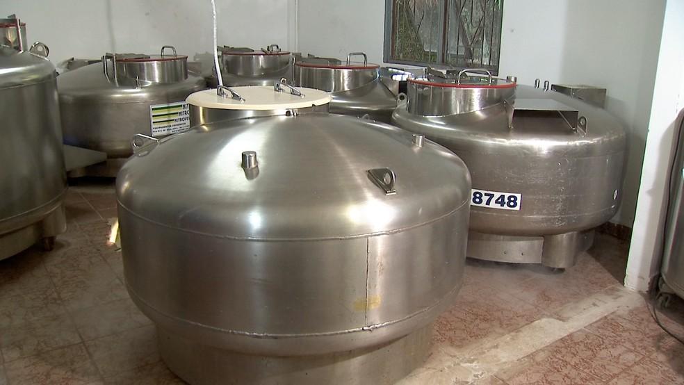 Tanques onde ficam armazenadas as doses de sêmen coletadas de touros nas centrais. — Foto: TV Morena/Reprodução