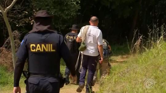 Cão que ajudou a encontrar jovem morta em Alumínio foi usado na investigação do Caso Vitória